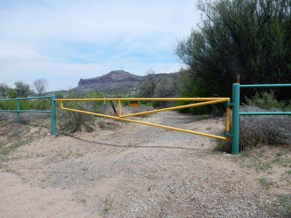 Wanderlusting Buckman Mesa