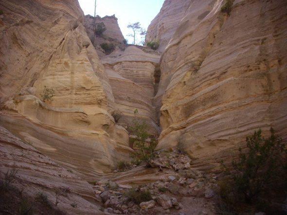 Wanderlusting Kashe Katuwe