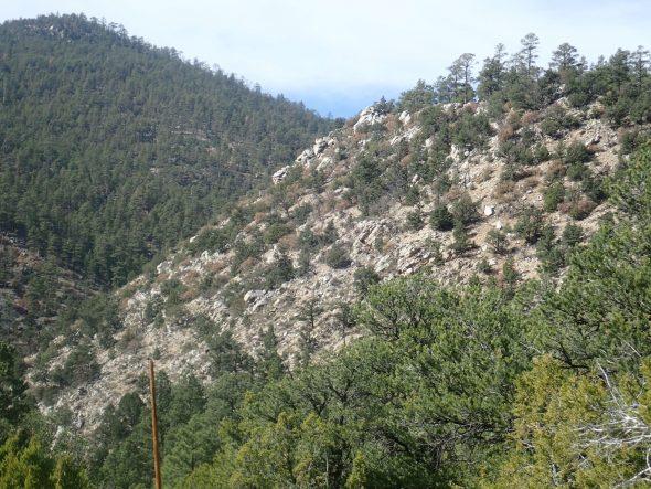 Wanderlusting the Ortega Formation